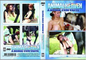 Animal Heaven Series