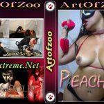 ArtOfZoo DVD