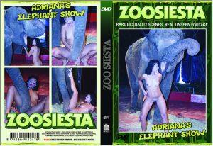 Zoo Siesta Series