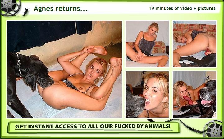 FuckedByAnimals.Com - Agnes returns
