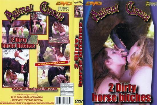 Animal Circus Series