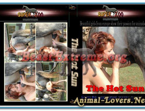 Super Zoo – The Hot Sun