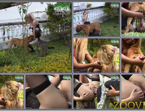 0085 – EXTREME SEX SCENES WITH DOGS
