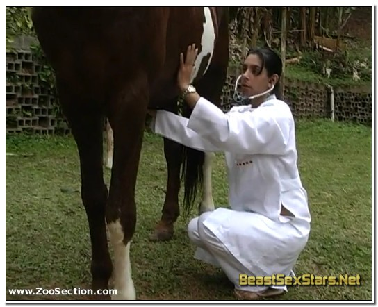 Horse Cock Checkup - BeastSexStars.Net ⋆ Beastiality.Club